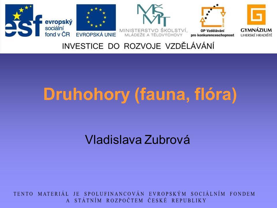 Druhohory (fauna, flóra)