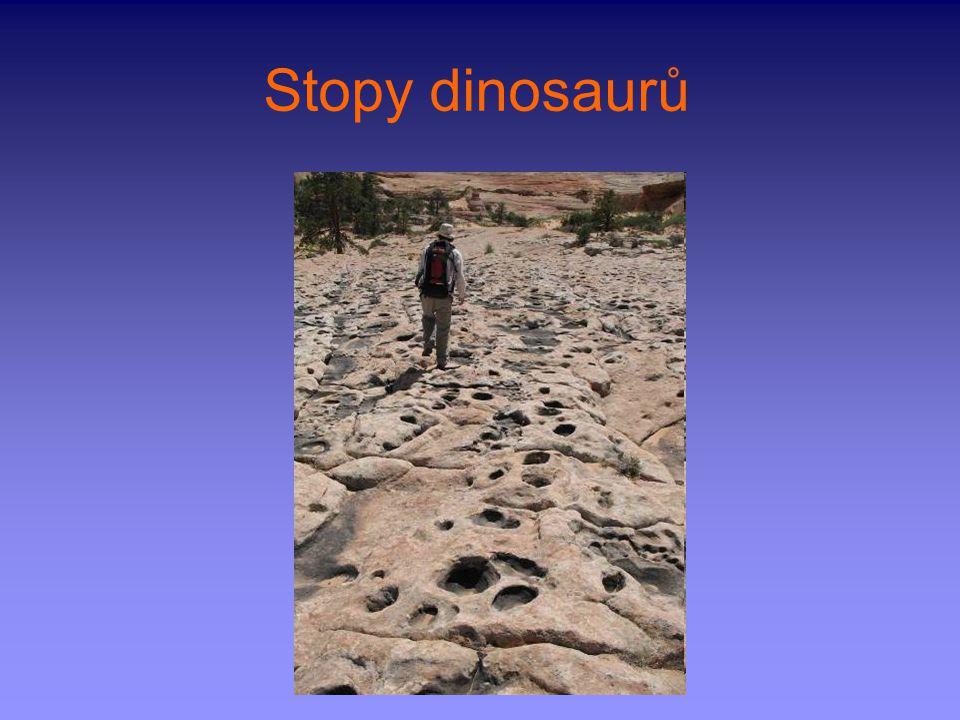 Stopy dinosaurů