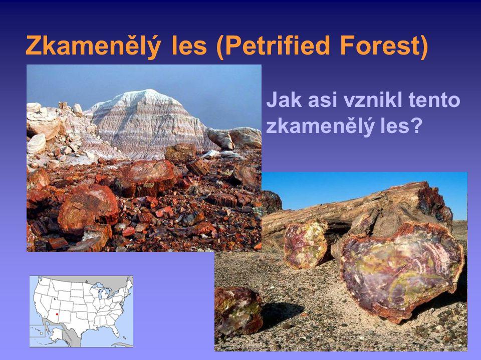 Zkamenělý les (Petrified Forest)
