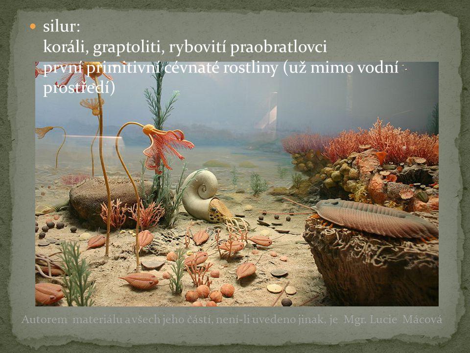 silur: koráli, graptoliti, rybovití praobratlovci první primitivní cévnaté rostliny (už mimo vodní prostředí)