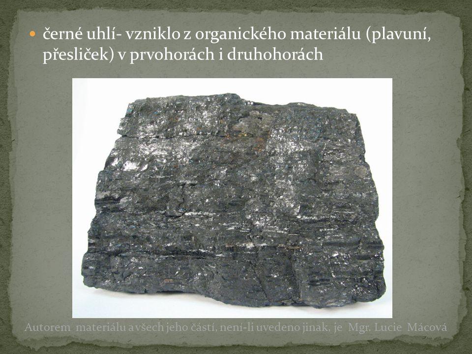 černé uhlí- vzniklo z organického materiálu (plavuní, přesliček) v prvohorách i druhohorách