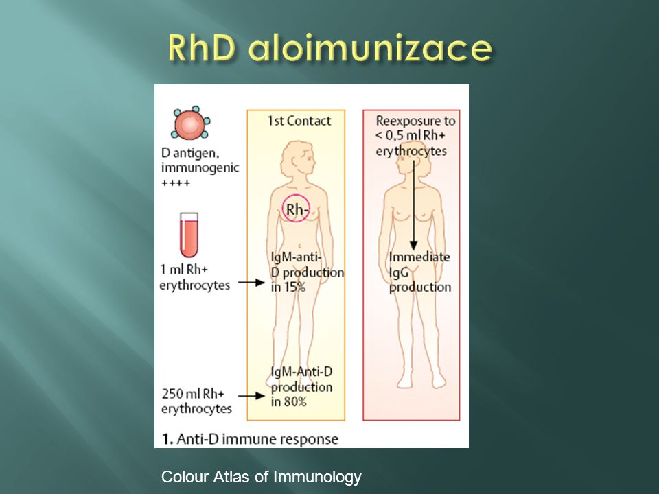RhD aloimunizace Colour Atlas of Immunology