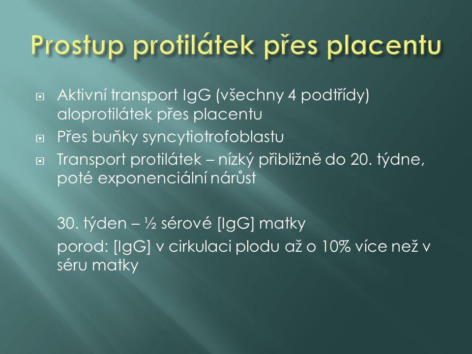 Prostup protilátek přes placentu