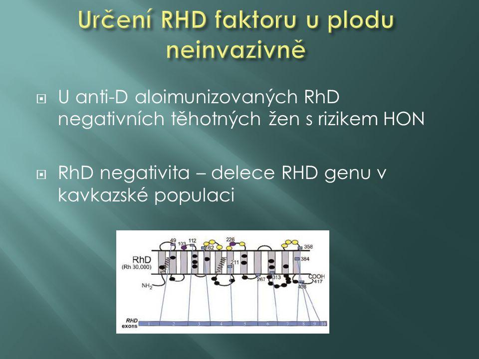 Určení RHD faktoru u plodu neinvazivně
