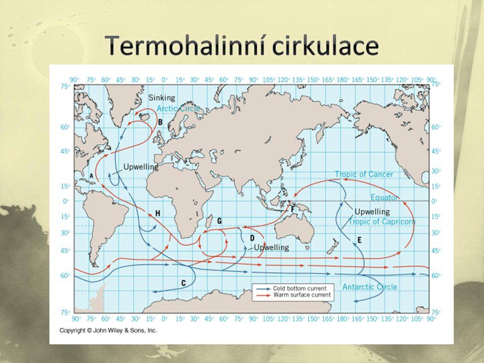Termohalinní cirkulace