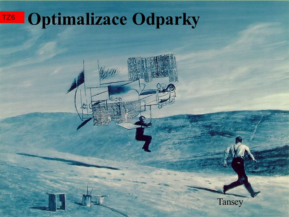 Optimalizace Odparky TZ6 Tansey