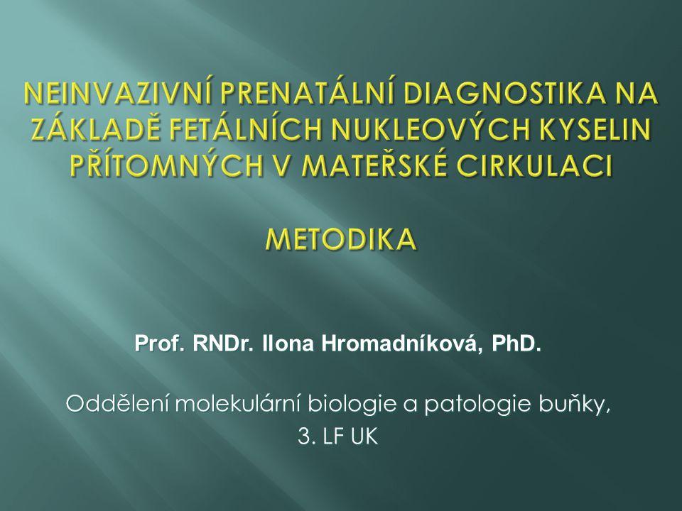 Prof. RNDr. Ilona Hromadníková, PhD.
