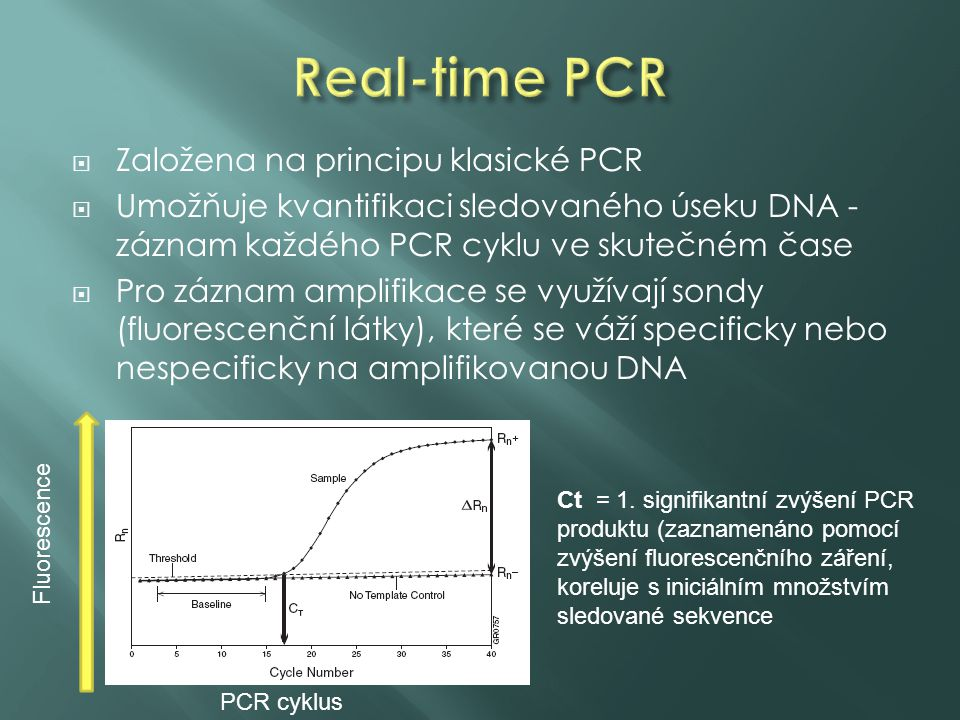 Real-time PCR Založena na principu klasické PCR