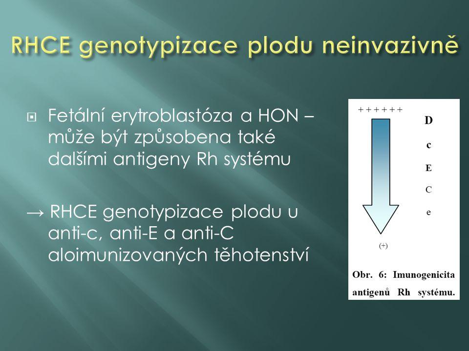 RHCE genotypizace plodu neinvazivně