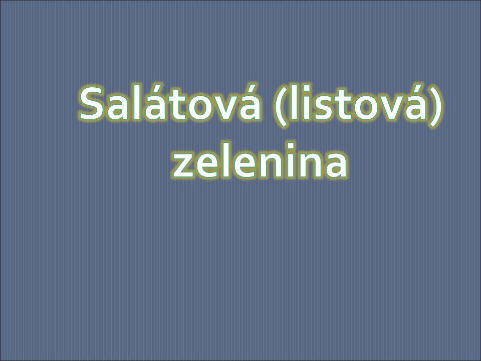 Salátová (listová) zelenina