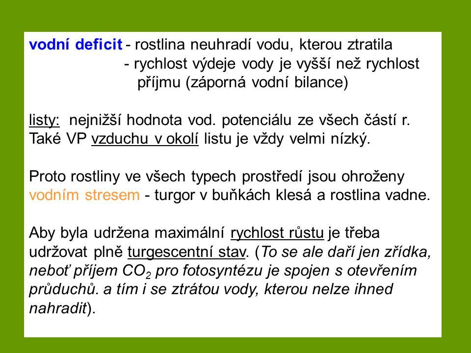 vodní deficit - rostlina neuhradí vodu, kterou ztratila