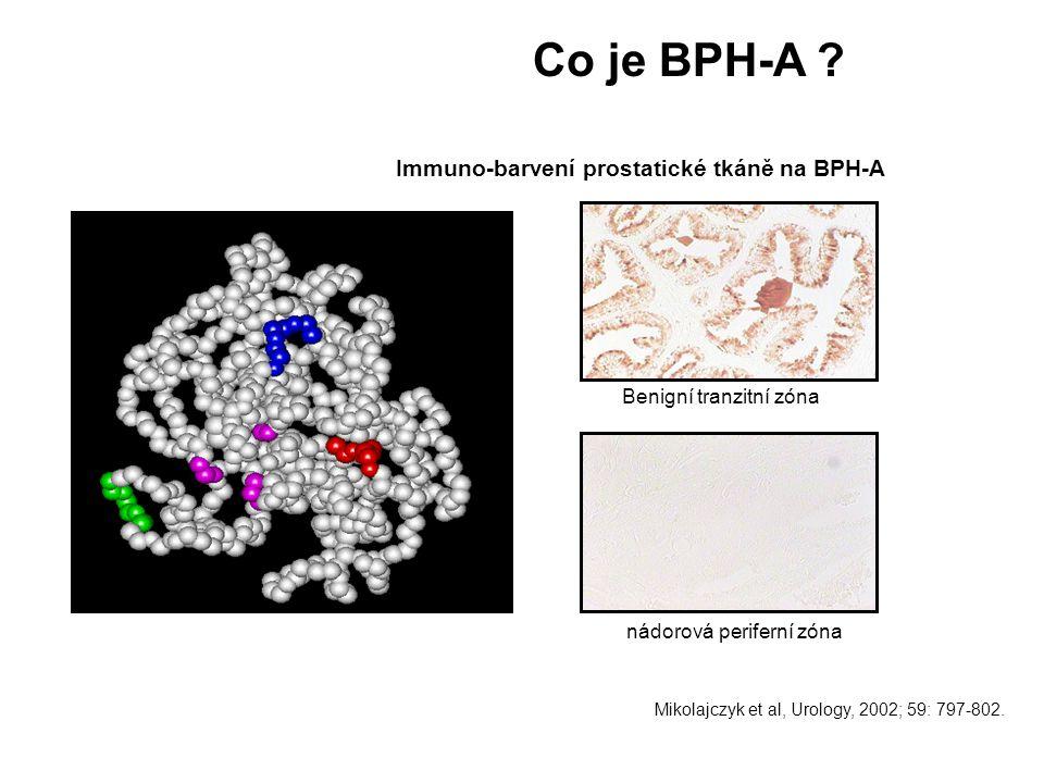 Co je BPH-A Immuno-barvení prostatické tkáně na BPH-A