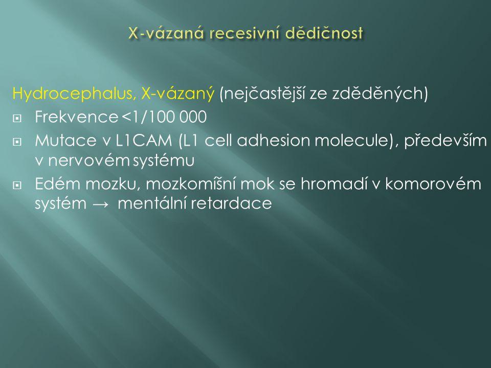 X-vázaná recesivní dědičnost