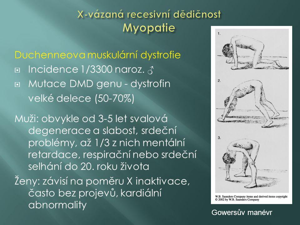 X-vázaná recesivní dědičnost Myopatie