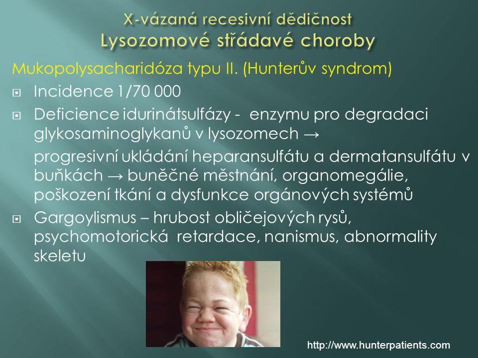 X-vázaná recesivní dědičnost Lysozomové střádavé choroby