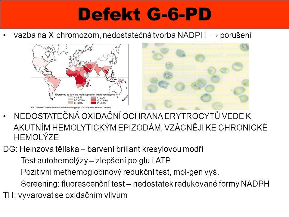 Defekt G-6-PD vazba na X chromozom, nedostatečná tvorba NADPH → porušení. NEDOSTATEČNÁ OXIDAČNÍ OCHRANA ERYTROCYTŮ VEDE K.