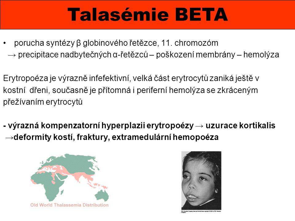 Talasémie BETA porucha syntézy β globinového řetězce, 11. chromozóm