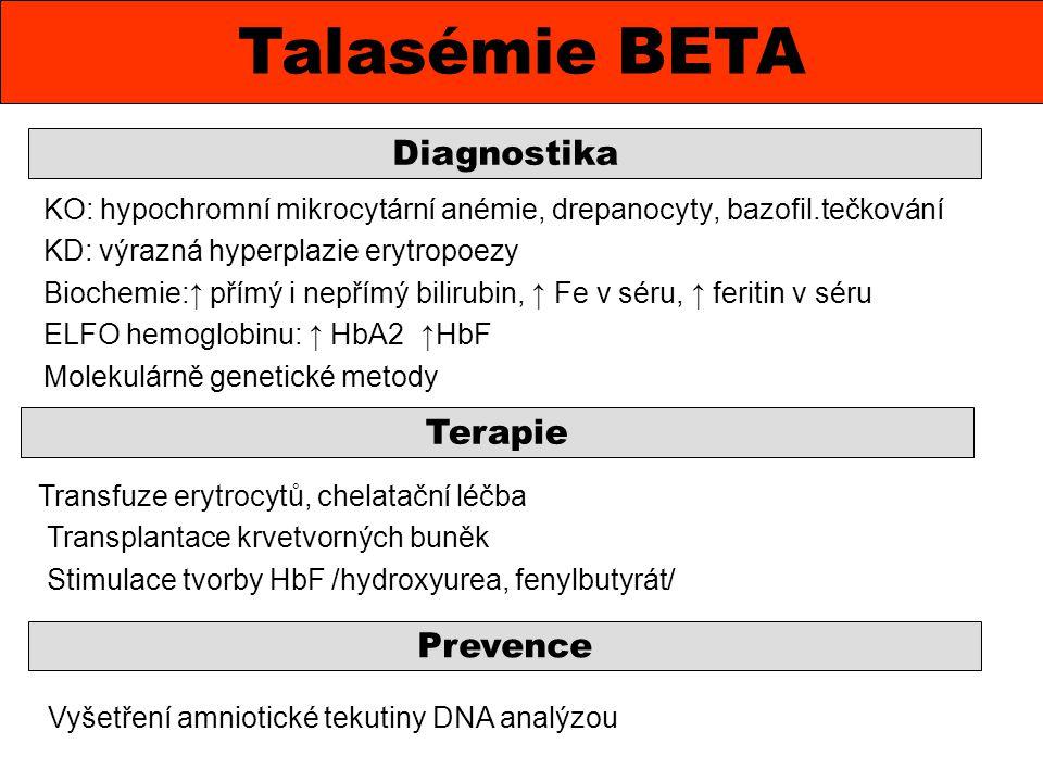 Talasémie BETA Diagnostika Terapie Prevence