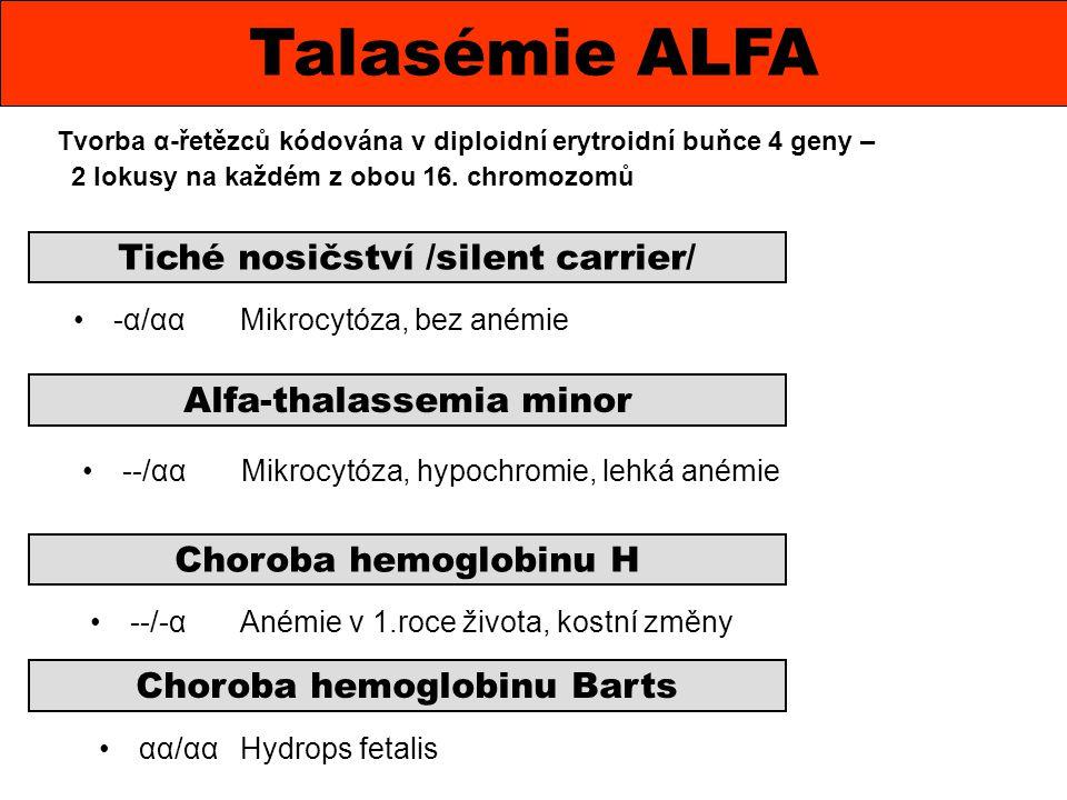 Talasémie ALFA Tiché nosičství /silent carrier/ Alfa-thalassemia minor