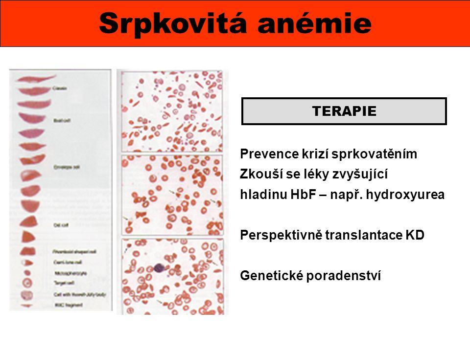 Srpkovitá anémie TERAPIE Prevence krizí sprkovatěním