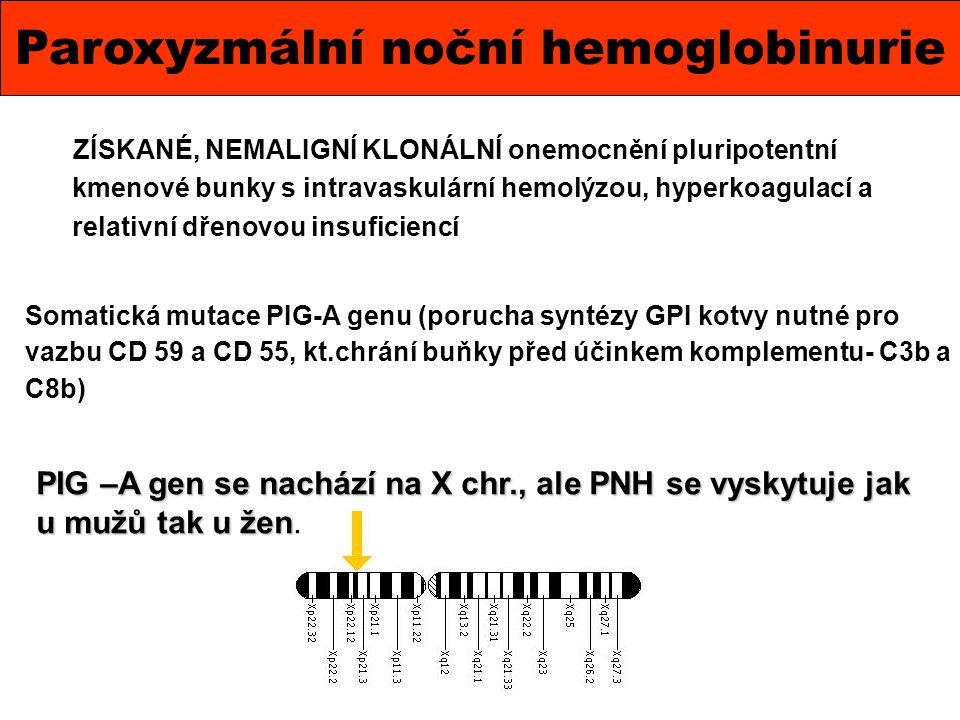Paroxyzmální noční hemoglobinurie