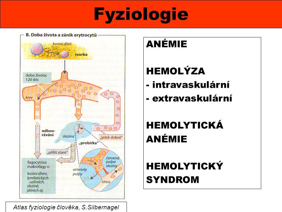 Atlas fyziologie člověka, S.Silbernagel
