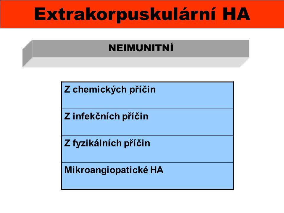 Extrakorpuskulární HA