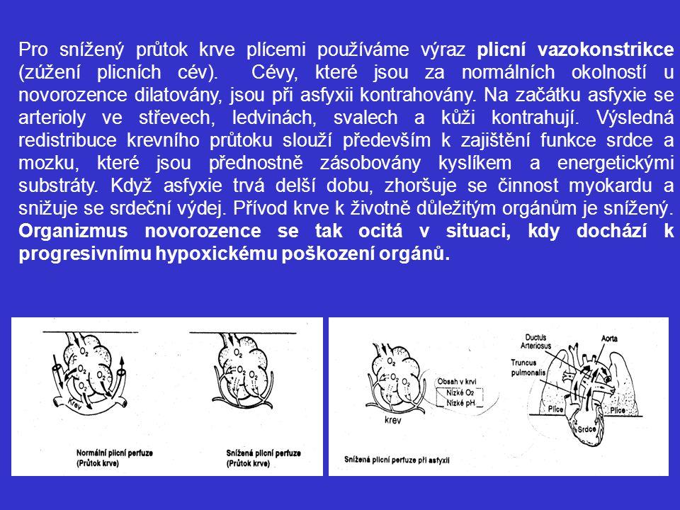 Pro snížený průtok krve plícemi používáme výraz plicní vazokonstrikce (zúžení plicních cév).