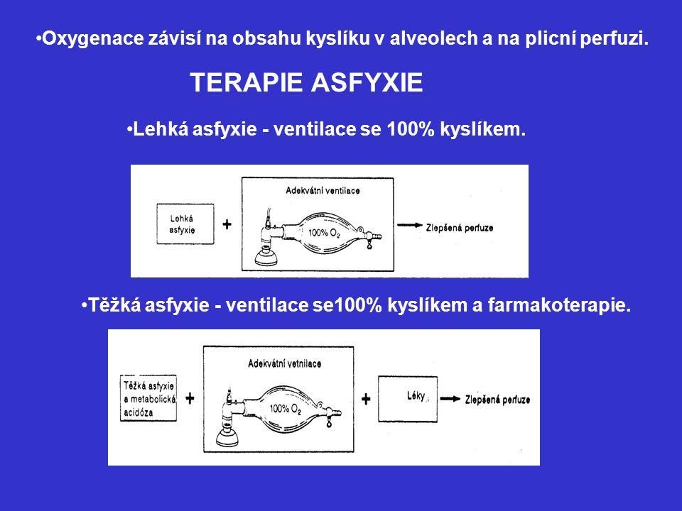 Oxygenace závisí na obsahu kyslíku v alveolech a na plicní perfuzi.