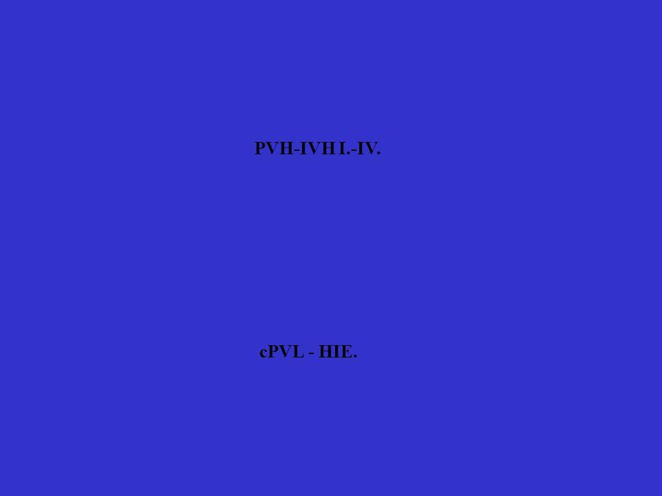 PVH-IVH I.-IV. cPVL - HIE.