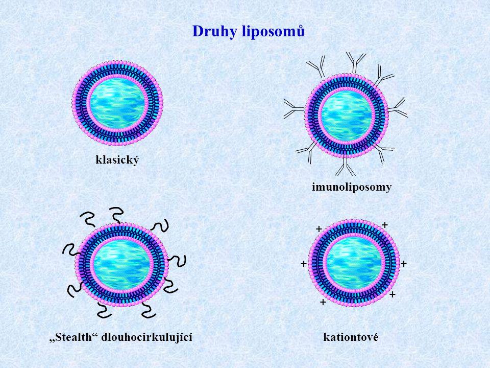 Druhy liposomů klasický imunoliposomy + + + + + +