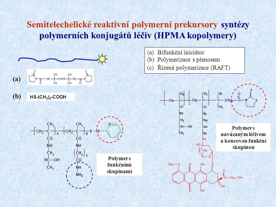 Semitelechelické reaktivní polymerní prekursory syntézy polymerních konjugátů léčiv (HPMA kopolymery)
