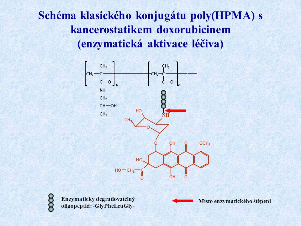 Schéma klasického konjugátu poly(HPMA) s kancerostatikem doxorubicinem