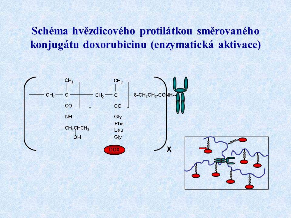 Schéma hvězdicového protilátkou směrovaného konjugátu doxorubicinu (enzymatická aktivace)