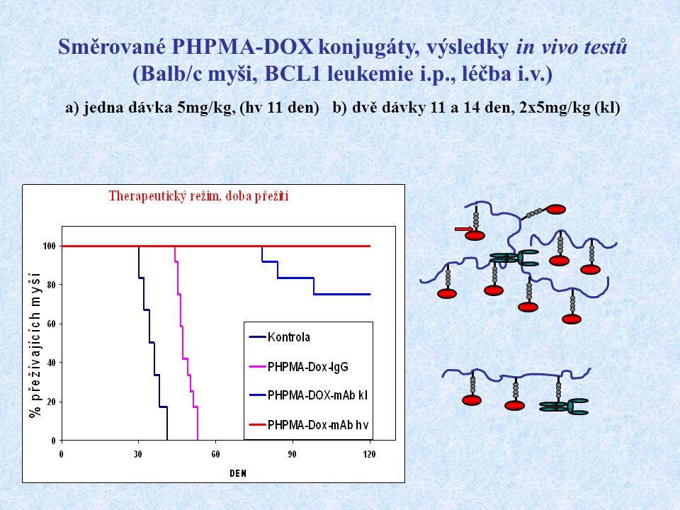 Směrované PHPMA-DOX konjugáty, výsledky in vivo testů (Balb/c myši, BCL1 leukemie i.p., léčba i.v.)