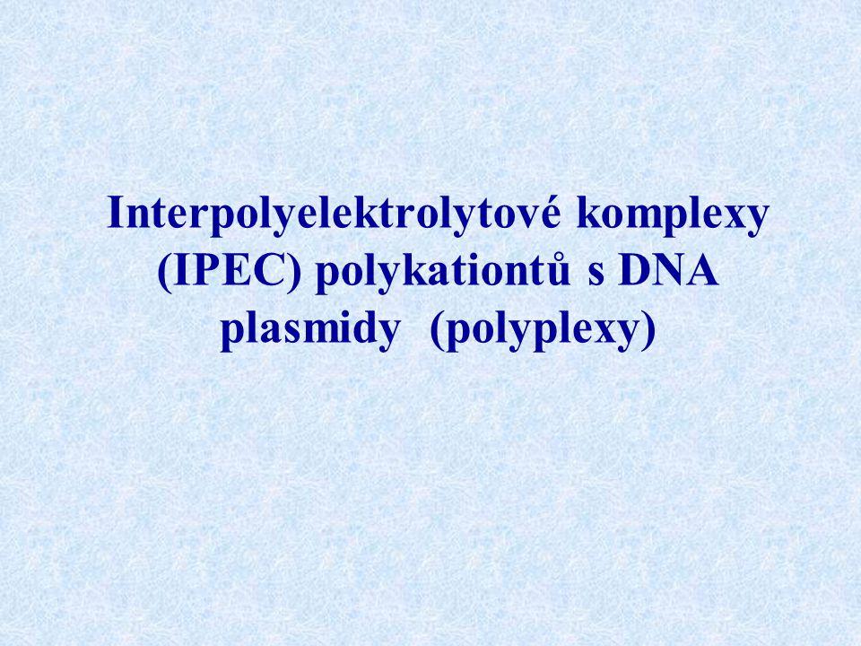 Interpolyelektrolytové komplexy (IPEC) polykationtů s DNA plasmidy (polyplexy)