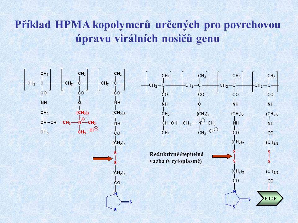 Příklad HPMA kopolymerů určených pro povrchovou úpravu virálních nosičů genu