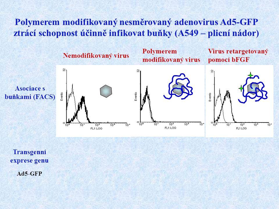 Asociace s buňkami (FACS) Transgenní exprese genu