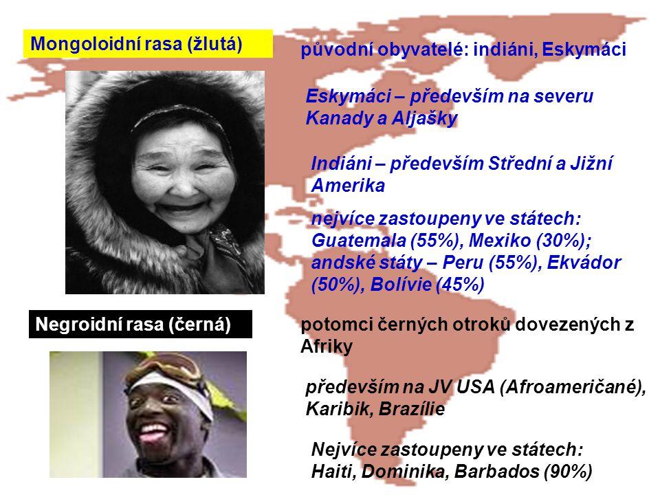 Mongoloidní rasa (žlutá)