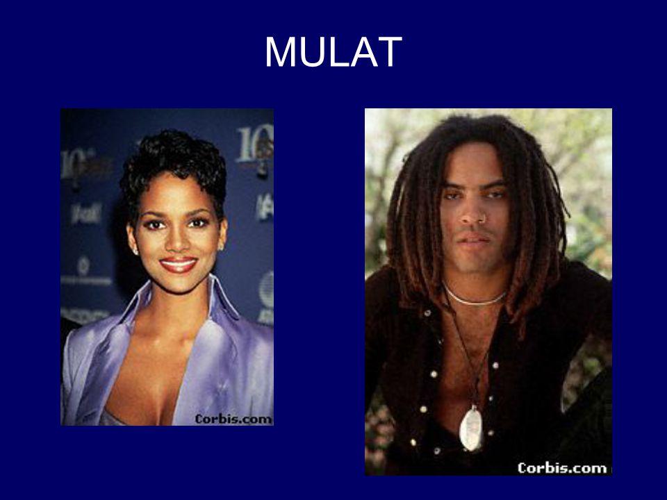 MULAT