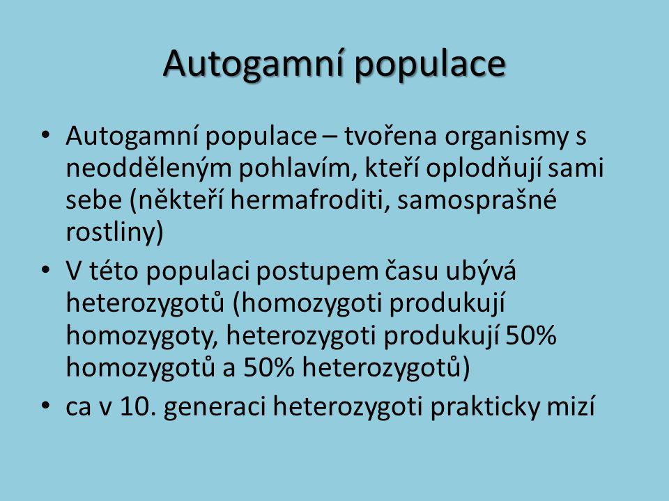 Autogamní populace