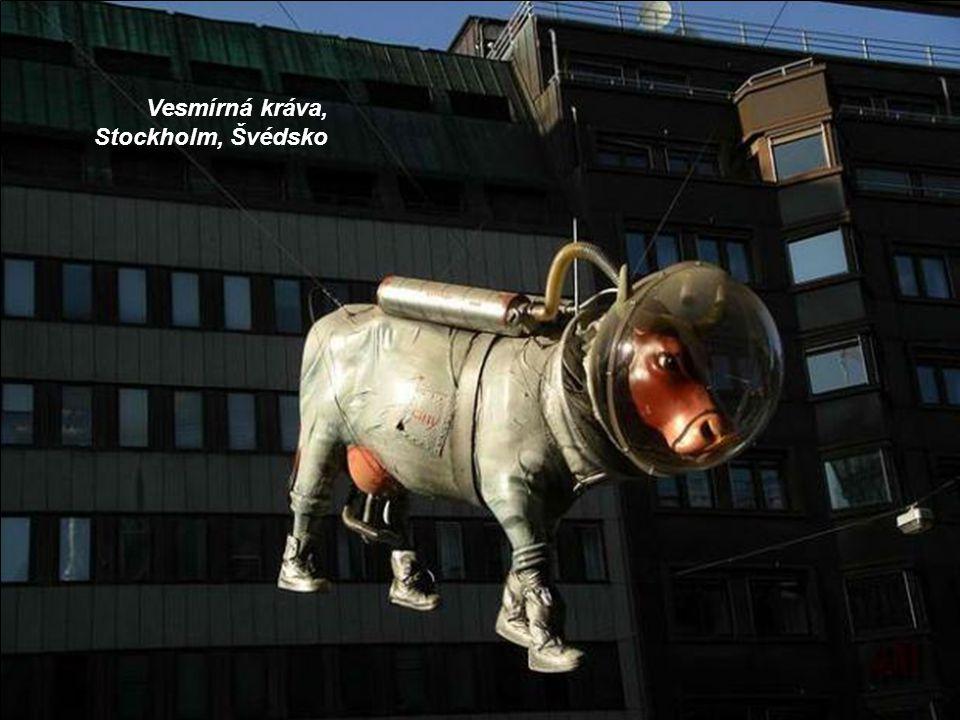 Vesmírná kráva, Stockholm, Švédsko