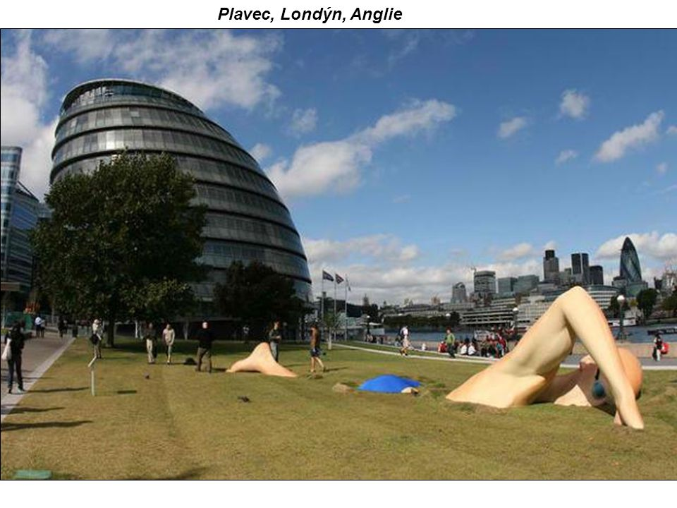 Plavec, Londýn, Anglie