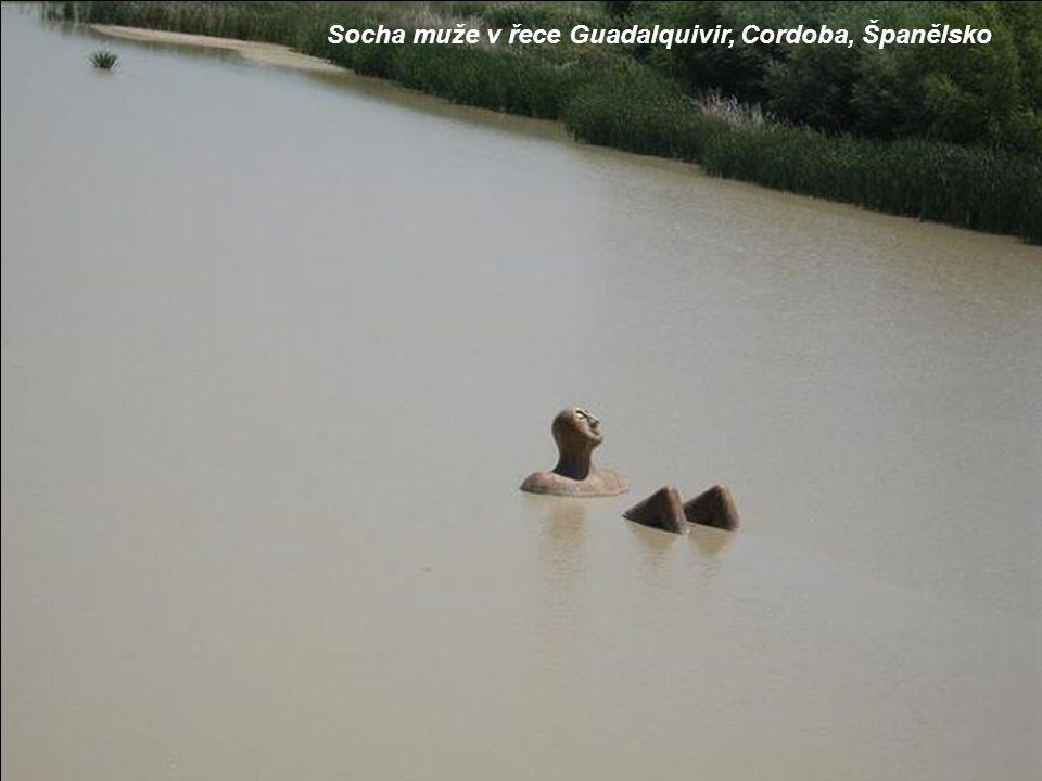 Socha muže v řece Guadalquivir, Cordoba, Španělsko