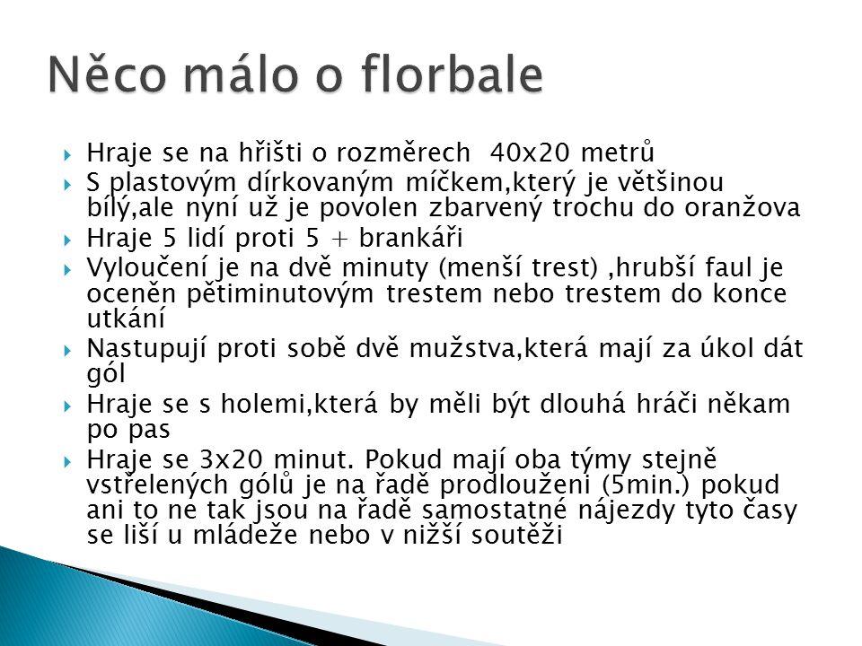Něco málo o florbale Hraje se na hřišti o rozměrech 40x20 metrů
