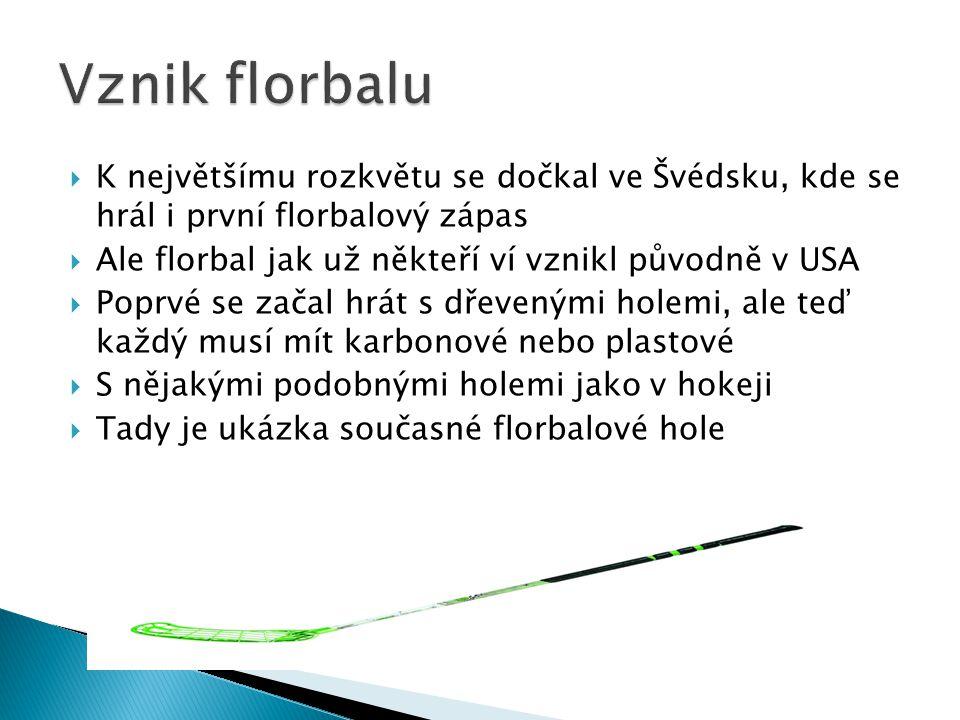 Vznik florbalu K největšímu rozkvětu se dočkal ve Švédsku, kde se hrál i první florbalový zápas. Ale florbal jak už někteří ví vznikl původně v USA.