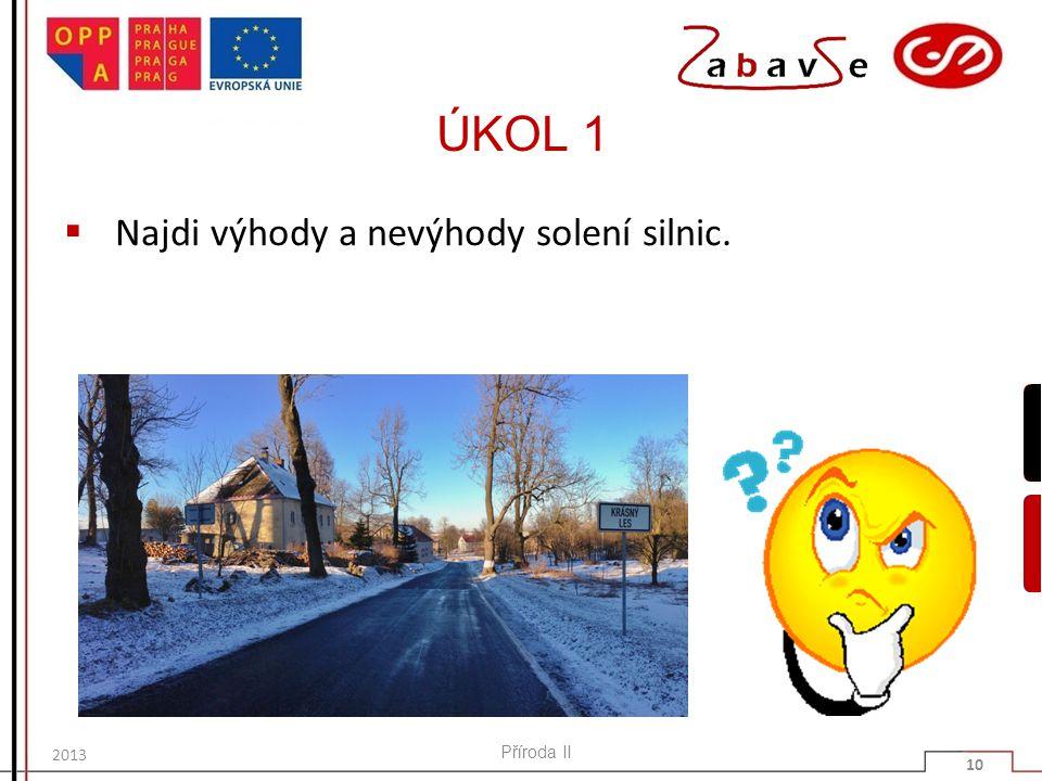 ÚKOL 1 Najdi výhody a nevýhody solení silnic. 2013 Příroda II 10