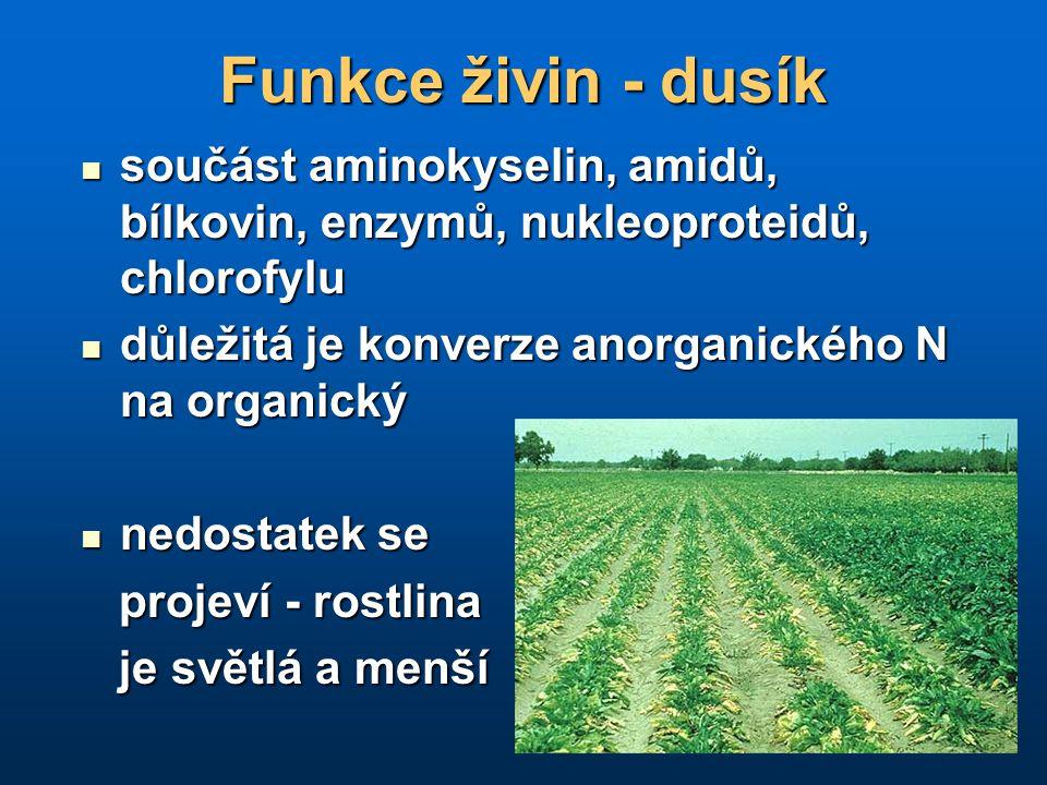 Funkce živin - dusík součást aminokyselin, amidů, bílkovin, enzymů, nukleoproteidů, chlorofylu. důležitá je konverze anorganického N na organický.
