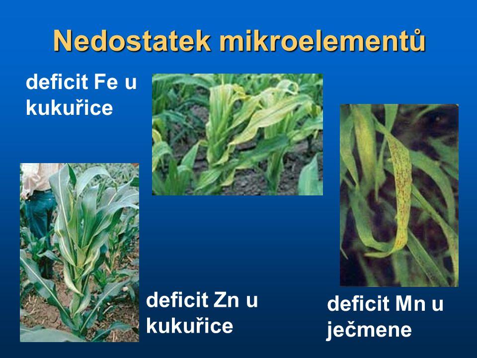 Nedostatek mikroelementů