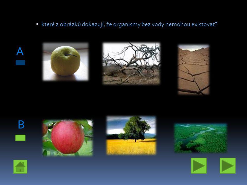 které z obrázků dokazují, že organismy bez vody nemohou existovat